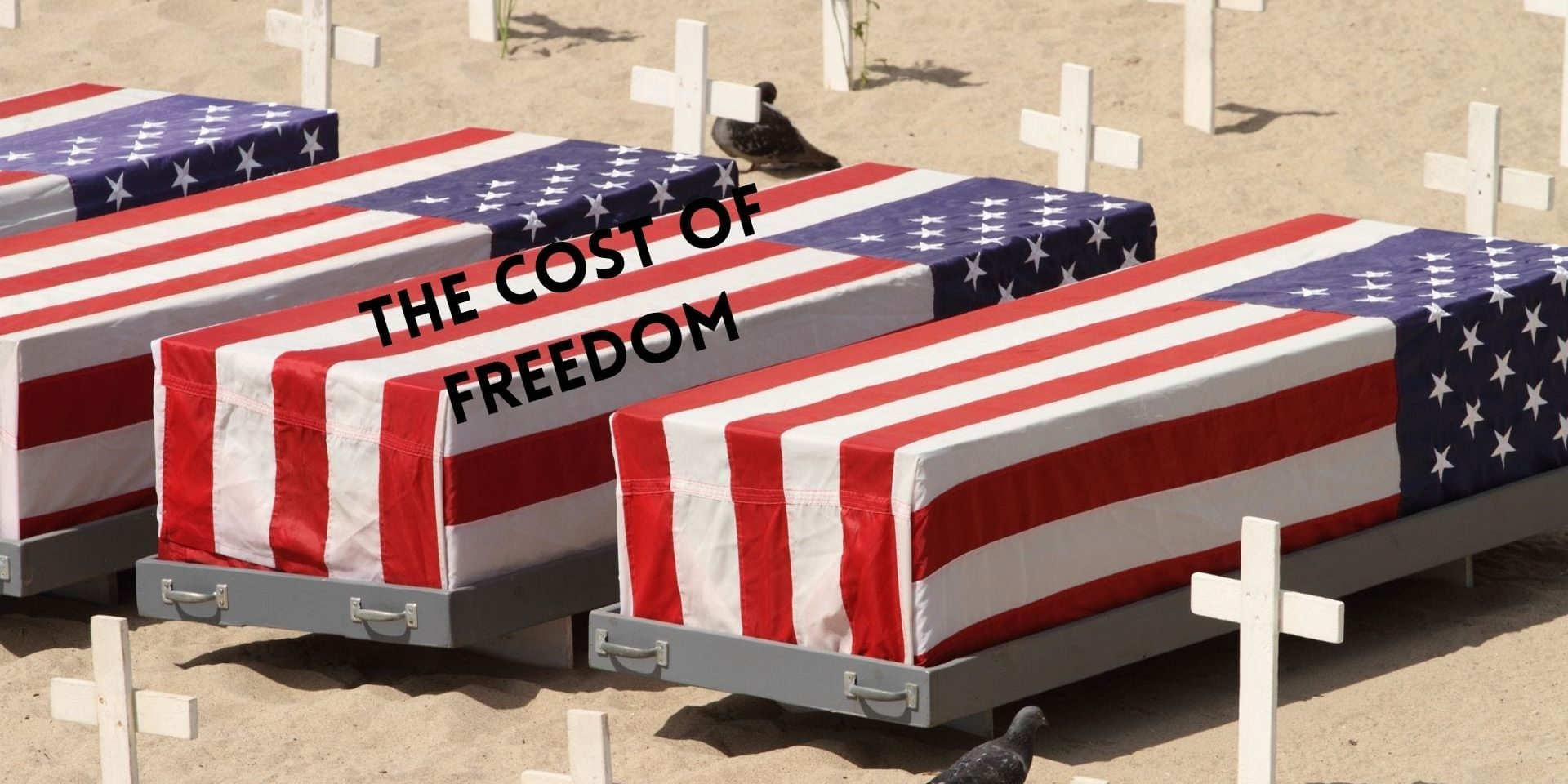 The Cost of Freedom (2)